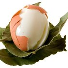 The white of the egg provides protein with no cholesterol.