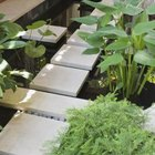For instant drama, lay white slate sparsely and surround with tall plants or a pond.