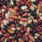 What are Healthy Legumes?