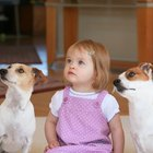 Can Dogs Tell the Difference Between Human Babies & Adults?