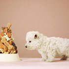 How to Make Tartar Control Dog Treats