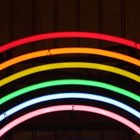 Different types of gasses are used to create the multitude of colors seen in neon lights.