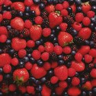Berries have lower pH level requirements than other types of plants.