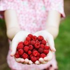 Raspberries provide essential fatty acids.