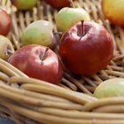 Different varieties of apples tolerate different amounts of cold and heat.