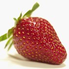 Do Strawberries Have Excessive Fiber?