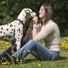 A Dog's Signs of Bonding With an Owner