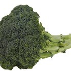 Is Broccoli Rich in Tryptophan?