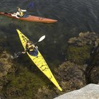 Kayak Exercises