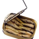 Vitamin B12 in Canned Fish