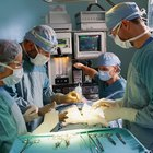The Role of a Perioperative Practitioner