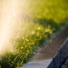 Knowing your watering rate prevents runoff.