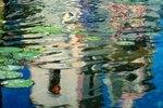 Download Concrete pond crack sealer