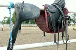 How to Repair a Dry Leather Saddle