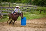 Corn Oil As a Supplement for Horses