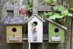 Birdhouse Benefits