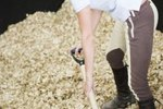 How to Choose Wood Shavings for Your Horse