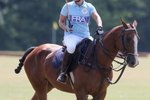 What Breed of Horse Is Used for Polo?