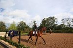 Exercises to Do While Riding Horses on the Flat