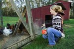 Heating a Chicken Coop in Winter