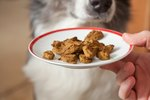 How to Make Liver Treats for Your Dog