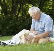 A pet trust may provide care after an owner's death.