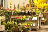 Write a Business Plan for a Flower Shop