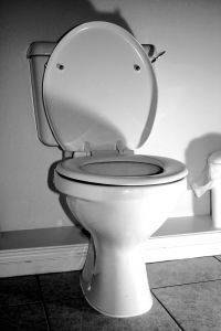 How Does a Dual Flush Toilet Work?