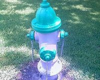 Start a Fire Hydrant Painting Business