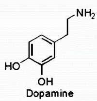 Chemical structure of dopamine, a neurotransmitter.