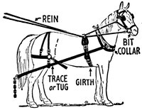 Parts of a Horse Driving Harness