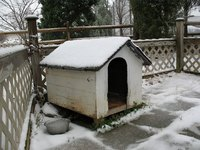 A quality doghouse will keep your lab dry in the rain or snow