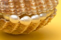 Many divers risked their lives for pearls.