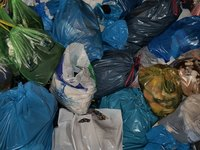 Discarded plastic bags are filling landfills across the world.