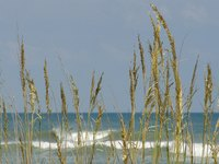 Elizabeth City is convenient to beaches near the Albemarle Sound.
