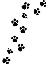how to draw a dog paw print