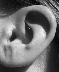 There are dozens of causes of a burning ear sensation.