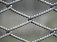 Cats can jump over and squeeze through chain link fences.