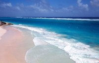There are four primary colors of beach sand: white, black, golden and pink.