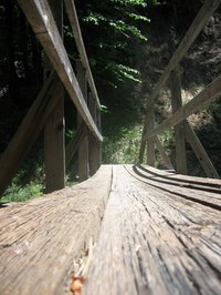 Wooden bridges are one of the earliest functional human structures.