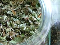 Green tea leaves work as a mild abrasive