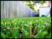 Make extra money by mowing lawns.