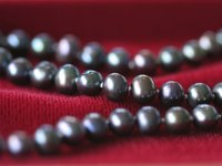 Black pearls are mostly found in Tahiti and the Cook Islands.