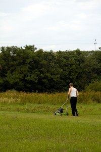 A mower powered by a Briggs & Stratton engine can be used to cut the grass.