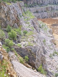 Eroded river beds sometimes expose valuable mineral ores that can be staked on federal lands.