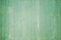 A simple food coloring mix can revitalize your tired old wallpaper.