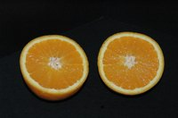 Organic oranges don't contain chemical pesticides.