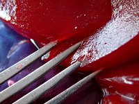 Freeze leftover cranberry sauce to use at a later date..