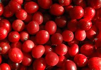Cranberries add bright color and a tart flavor to your dish.
