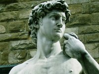 Michelangelo's David is made of white marble.
